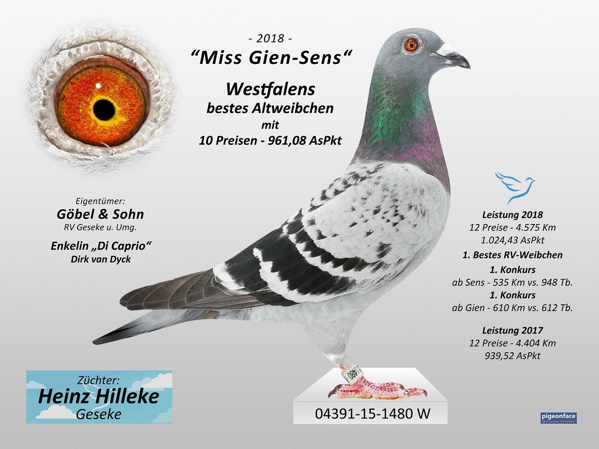 bild-04391-15-1480-westf-hilleke