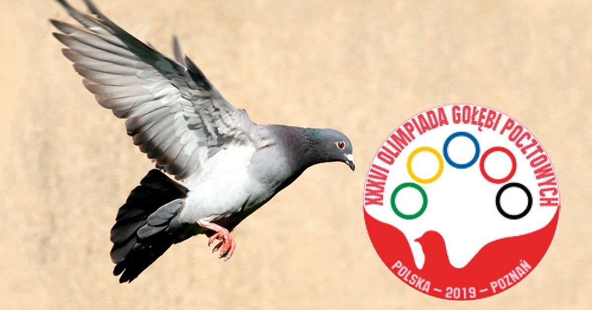 Olympiade_Poznan_Header-1200x630